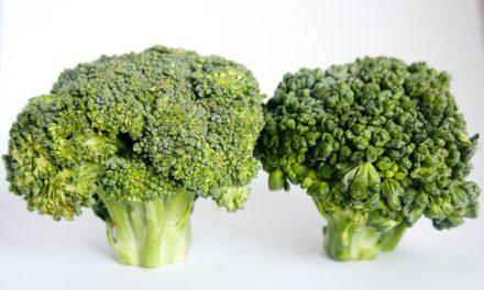 Monsanto: EU Patentamt erlaubt Patent auf Brokkoli