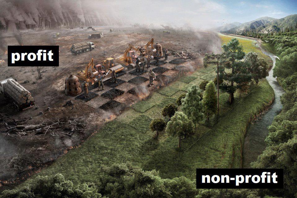 Der blaue Planet wird grüner – Hoffnung für unsere Natur