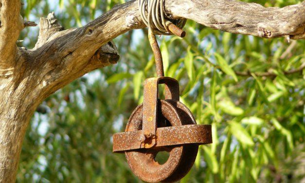 Wissen: Rad und Seilzug – von einfachen Maschinen