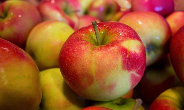 Äpfel die Wundermedizin der Natur