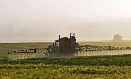 Wie gefährlich ist das meist eingesetzte Pflanzengift der Welt Glyphosat?